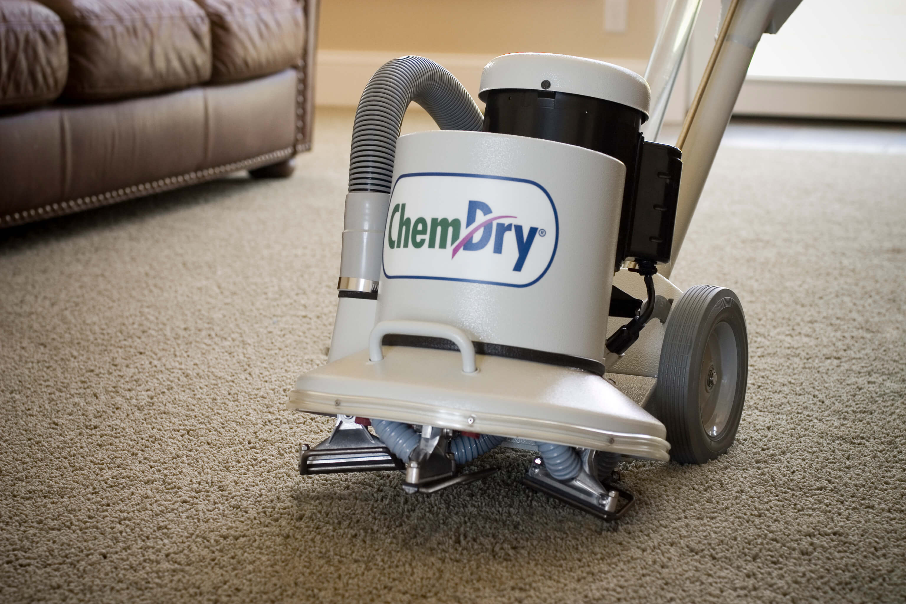 A New Way to Clean Carpets