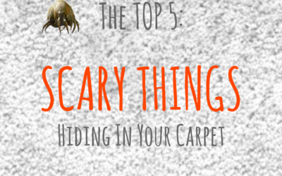 The Top 5 Scary Things Hiding in Your Carpet