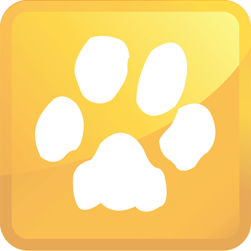 pet urine removal icon