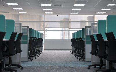 How Commercial Carpet Cleaning Actually Saves Businesses Money